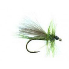 CDC blue winged olive